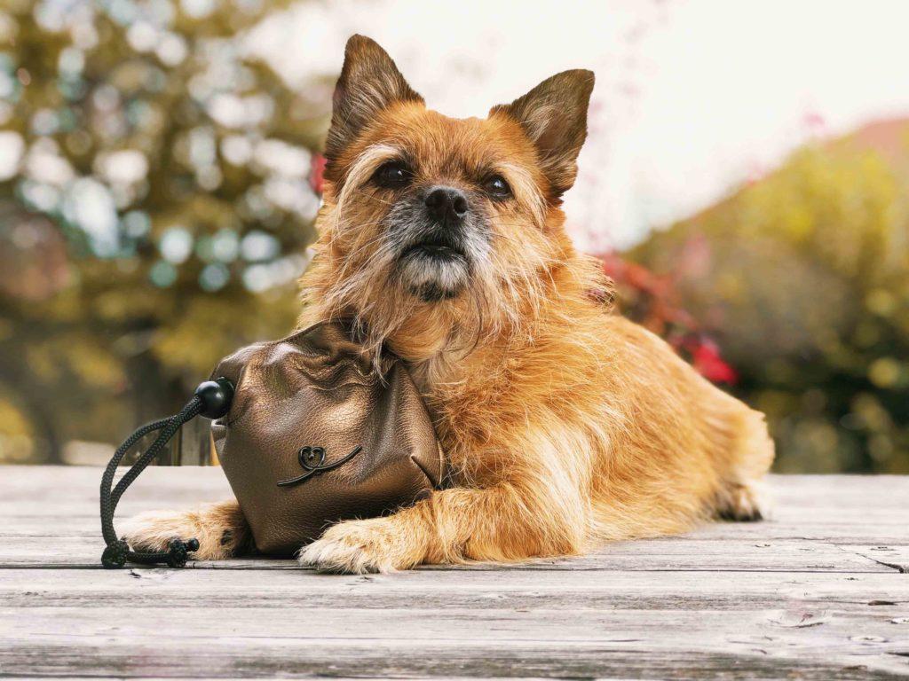 Gassitasche Futterbeutel Hund Bellovie