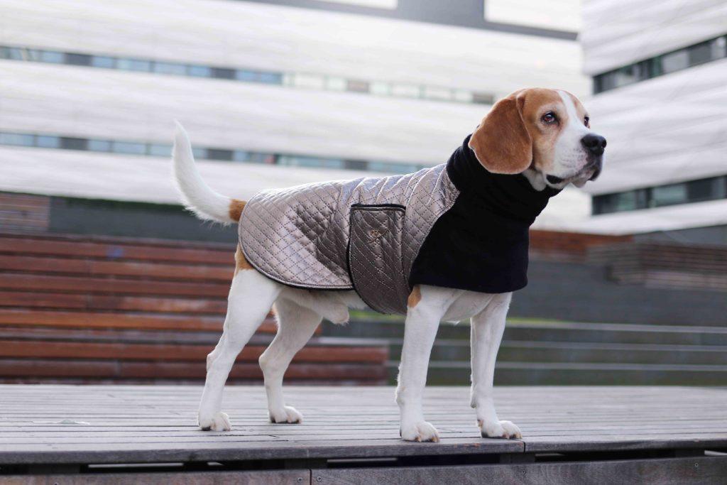 Hundemantel Maßanfertigung Designer Bellovie