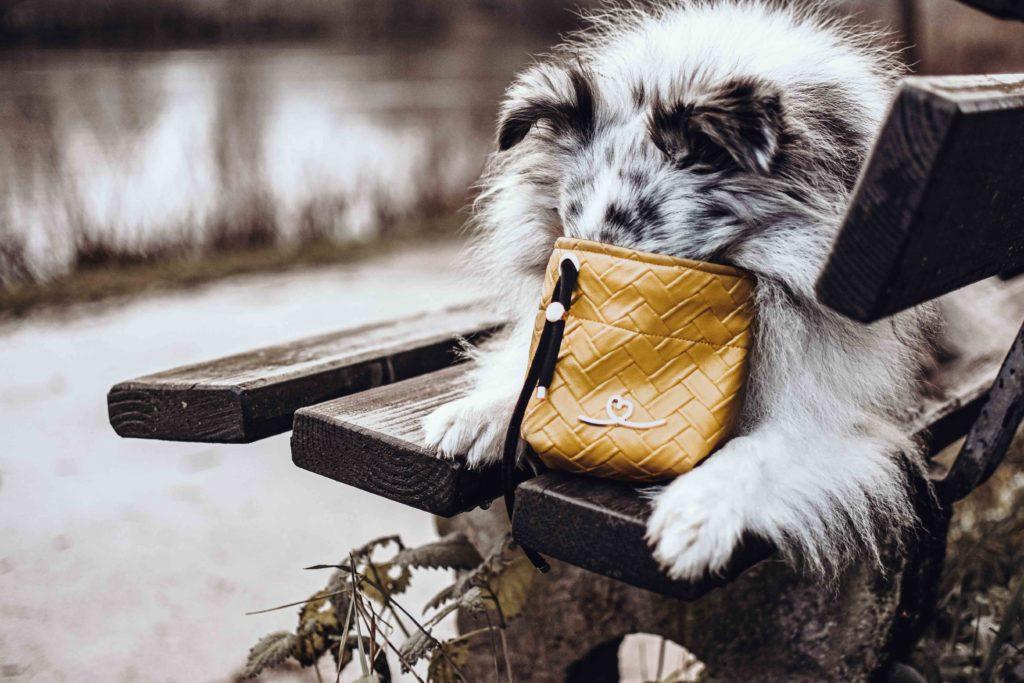 Gassitasche Futterbeutel Hund BellovieI